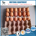 30 hole egg tray are sold to Australia