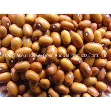Brown Kidney Beans 2014