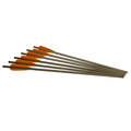 "EXCALIBUR - 2213 ALUMINIUM ARROWS 20 ""XX75 (6PK)"