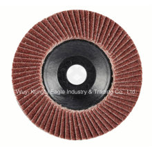 Aluminum Oxide with Plastic Cover Flap Disc