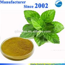 Approvisionnement d'usine de GMP d'OIN 100% d'extrait pur de menthe poivrée normale