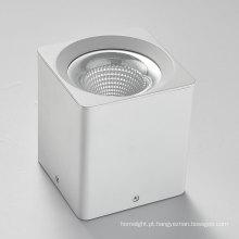 Dimmable 10-40W superfície montada COB LED Downlight