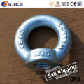 Carbon Steel Lifting Forged Galvanizing DIN582 Eye Nut