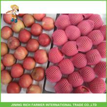China yantai best fuji apple price