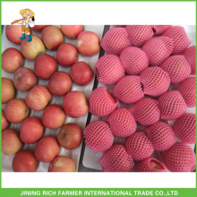 Fresh Red Fuji Apple 2015