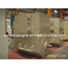 Para la venta 6300V 1000rpm AC Alternadores (4504-6 500kw)