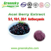 Super Antioxidant 100% natural plant extract Acai berry extract /Acai Extract 10:1/Acai juice powder /Acai berry powder