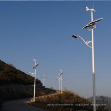 Luz de calle Solar del viento