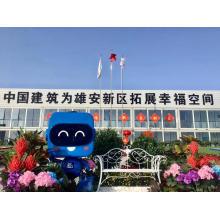 Proyecto de pared exterior del centro de servicio de Xiong'an