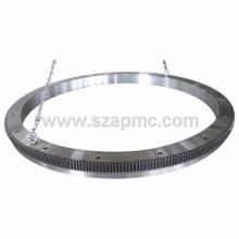Large Gear Ring, Precision Large Diameter Gear Ring