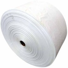 High Tenacity PP Liner Fabric