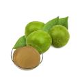 Polvo de extracto de fruta de monje puro orgánico