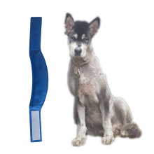 Reliable for Dog Collar,Dog Bowl,Dog Clean Massage Glove,Dog Whistle Manufacturer in China Safe Non-Toxic Heat Stress Relieves Cooling Dog Collar supply to Liberia Wholesale