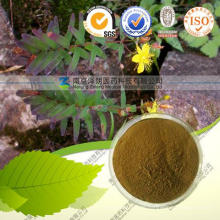 Hypericum Perforatum Extract Hypericin 0.3%, 20% Good Quality