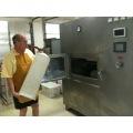 Fruit Slice Foaming Machine