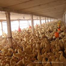 Chengdu Supply Amino Acid Chelate Feed Grade