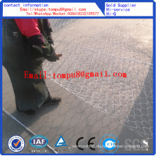 Hexagonal Gabion Box / Hexagonal Maschendraht