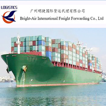 Free Warehousing and Goods Inspection Logistic Forwarder Sea Shipping Agents From China to Europe