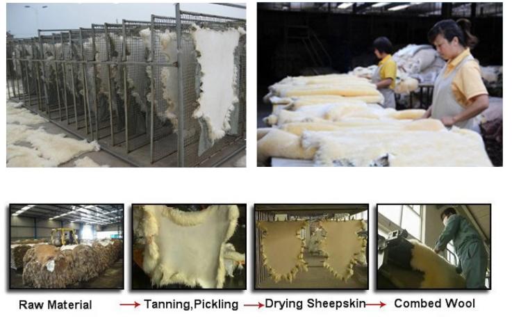 sheepskin factory