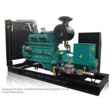 Cummins Natural Gas Genset (33kVA-1650kVA)