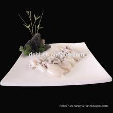 Хороший гигантский замороженный осьминог