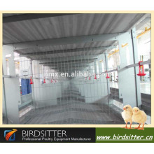 design broiler cages in china