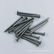 Polished Common Nail (Factory)