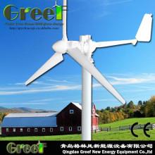 5kw 220VAC Windkraftanlage Turbine