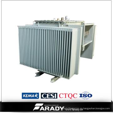 Transformadores de 300 kVA en inmersión en aceite de 3 fases