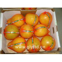 Nouvelle récolte de pomme de miel fraîche