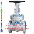 1 Carbon steel flange RF RTJ gate valve /sales@oknflow.com