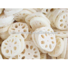 Organic Cultivation IQF Frozen Lotus Root Prices
