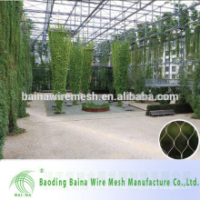 China Supplier Hot Sale Green Steel Rope Mesh