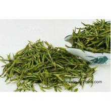 Orgânico Bud Chá Verde