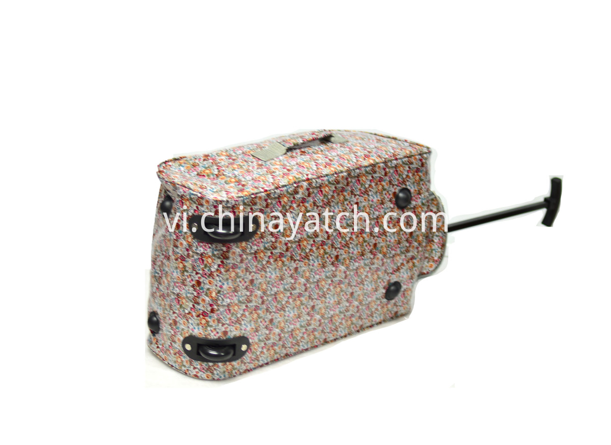 Lady Printing Travel Bag