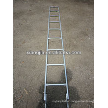 factory price scaffold ladder