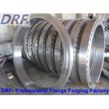 Pipe Flange, Large Diameter, Forging Flange