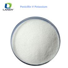 Bom potássio farmacêutico da penicilina V da categoria do bom preço