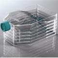 Flacon de culture cellulaire de laboratoire à 5 couches