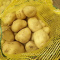 Golden Supplier of Fresh Potato From China