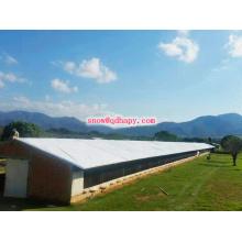 Stahlstruktur-Hühnerstall mit niedrigem Preis und hoher Qualität vom Hersteller