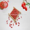 Ningxia usine de nourriture halal fournir goji berry