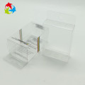 Disposable clear PET plastic folding box