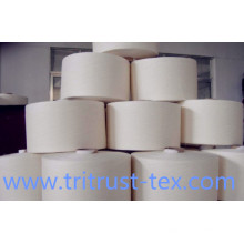 Spun Polyester Sewing Yarn (2/s40)