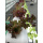 Hydroponic growing systems vertical tower garden NFT channel