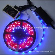 Tira LED Dream Color RGB 5050 Magic IC 1606