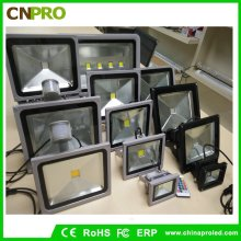10W 20W 30W 50W RGB LED Flood Light avec fonction mémoire