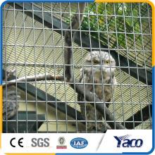 Most popular 10 gauge galvanized welded wire mesh