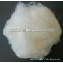 Fábrica de fibra de cachemira de muchos años de producción con alta honestidad