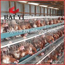 Verkauf 2m 30 Nest 3-Tier Hühnerkäfig